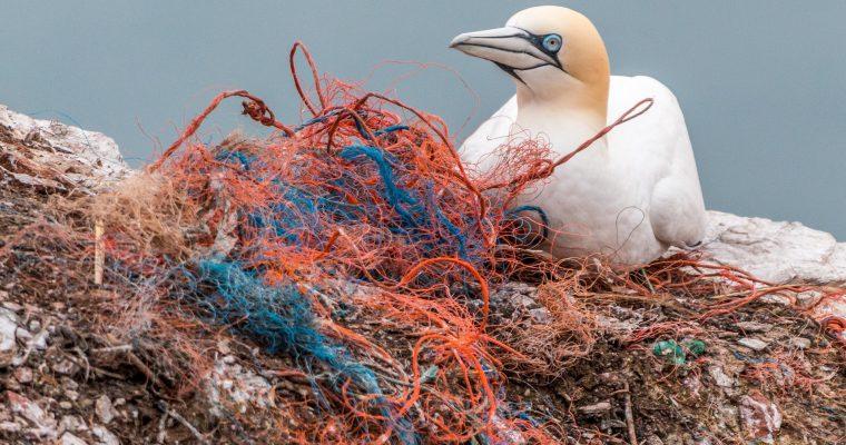 Jednoglasno protiv slamčica: EU zabranjuje upotrebu jednokratne plastike