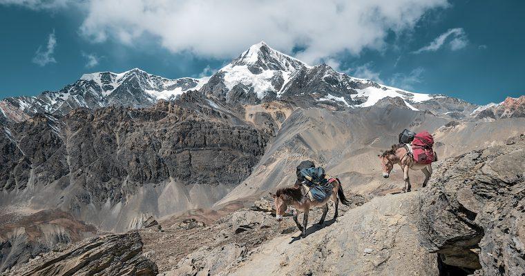 Nestajanje Himalaja: Klimatske promene će do 2100. zbrisati trećinu leda sa krova sveta