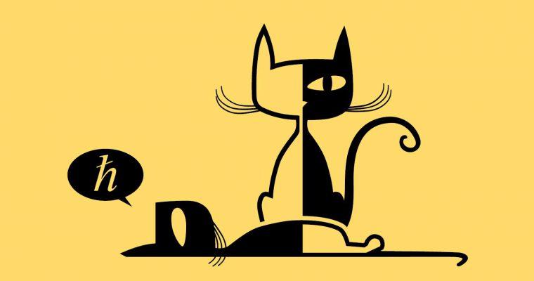 """""""Ko je ubio Šredingerovu mačku"""": Naučnopopularna tribina Instituta za fiziku"""